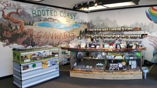 image feature Rooted Coast Cannabis