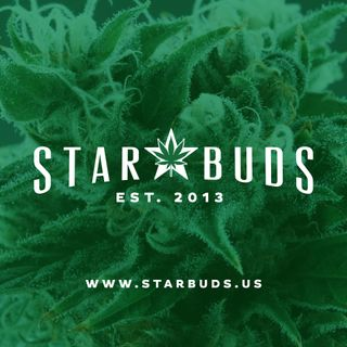 image feature Star Buds Lawton