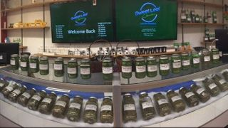 image feature Sweet Leaf Cannabis - Springfield