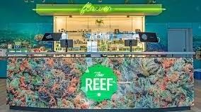 image feature The Reef - Bremerton