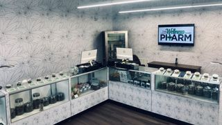 image feature The Wellness Pharm