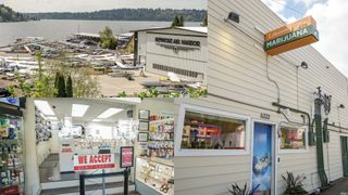 image feature Theorem Cannabis - Kenmore