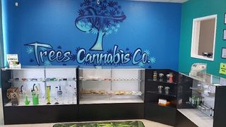 image feature Trees Cannabis Co.