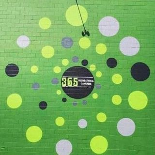 365 Recreational Cannabis - Shoreline