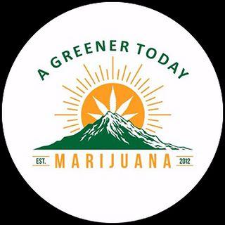 A Greener Today - Shoreline