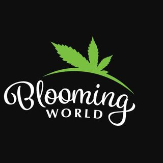 Blooming World Cannabis