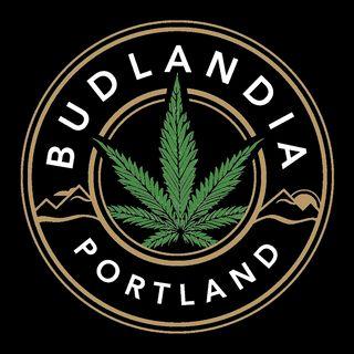 Budlandia - Division St.