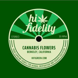 Hi-Fidelity