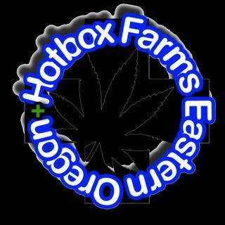 Hotbox Farms - Huntington