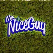 Mr. Nice Guy - Eugene - 7th Avenue