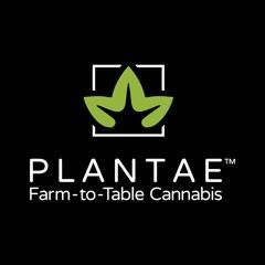 Plantae Bend
