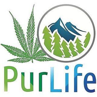PurLife - Menaul