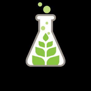 Sanctuary - Gardner Medical