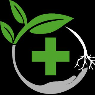 Today's Herbal Choice - Rainier