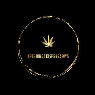 Tree Kings NW OKC