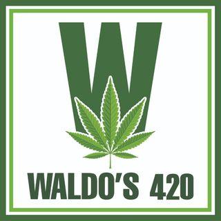 Waldo's 420 Store - Medicine Hat