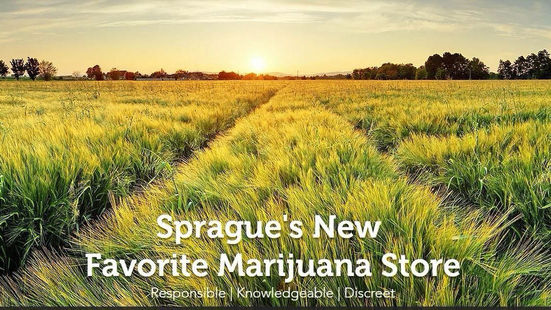 store photos 2020 Solutions - Sprague