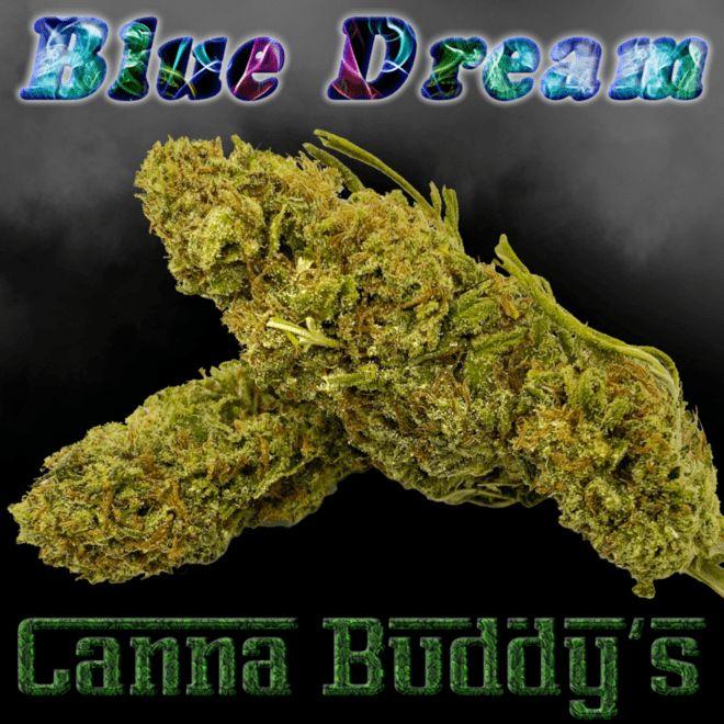 store photos American Cannabis Company