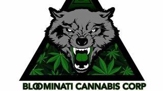 store photos Bloominati Cannabis
