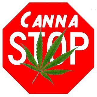store photos Canna Stop