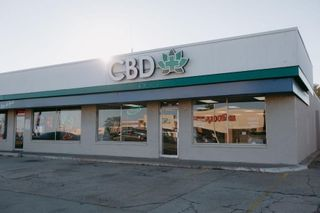 store photos Lotus Gold Dispensary by CBD Plus USA - 65th and May