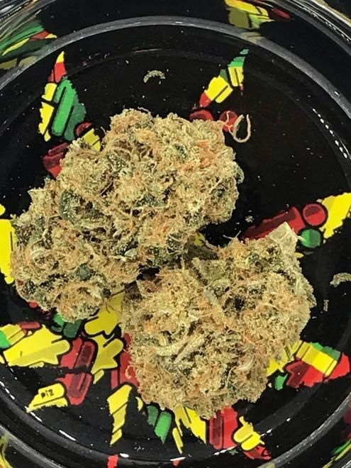 store photos Cloud 9 Cannabis