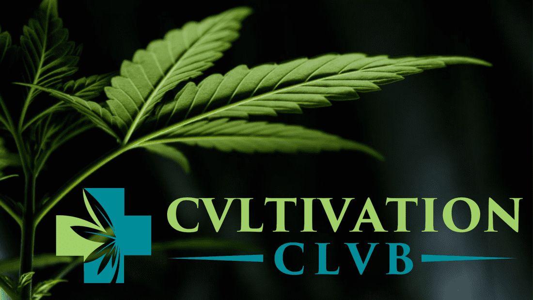 store photos Cvltivation Clvb