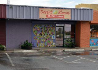 store photos Desert Bloom Releaf Center