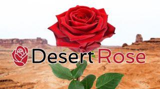 store photos Desert Rose