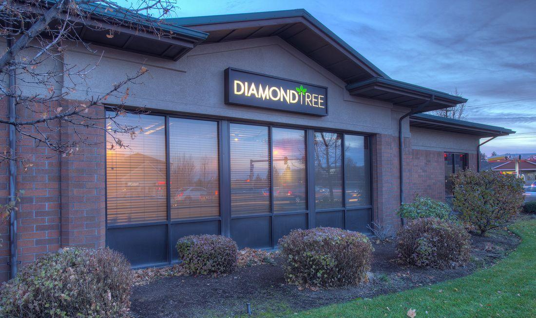 store photos DiamondTREE - Eastside Bend