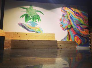store photos From The Earth - Santa Ana