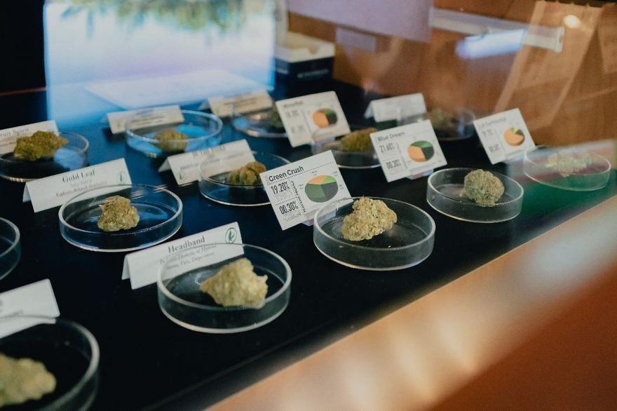 store photos Giving Tree Dispensary