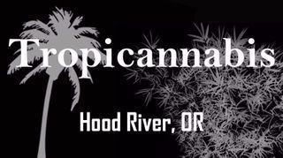 store photos Tropicannabis Club