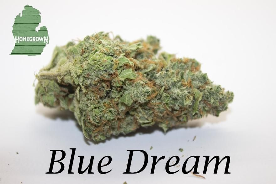 store photos Homegrown Cannabis Company