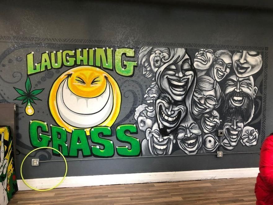 store photos Laughing Grass