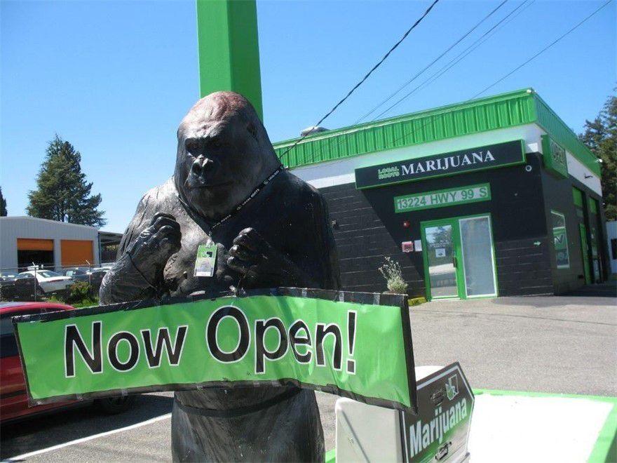 store photos Local Roots Marijuana - Everett