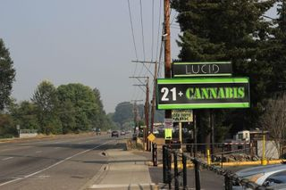 store photos Lucid - Puyallup