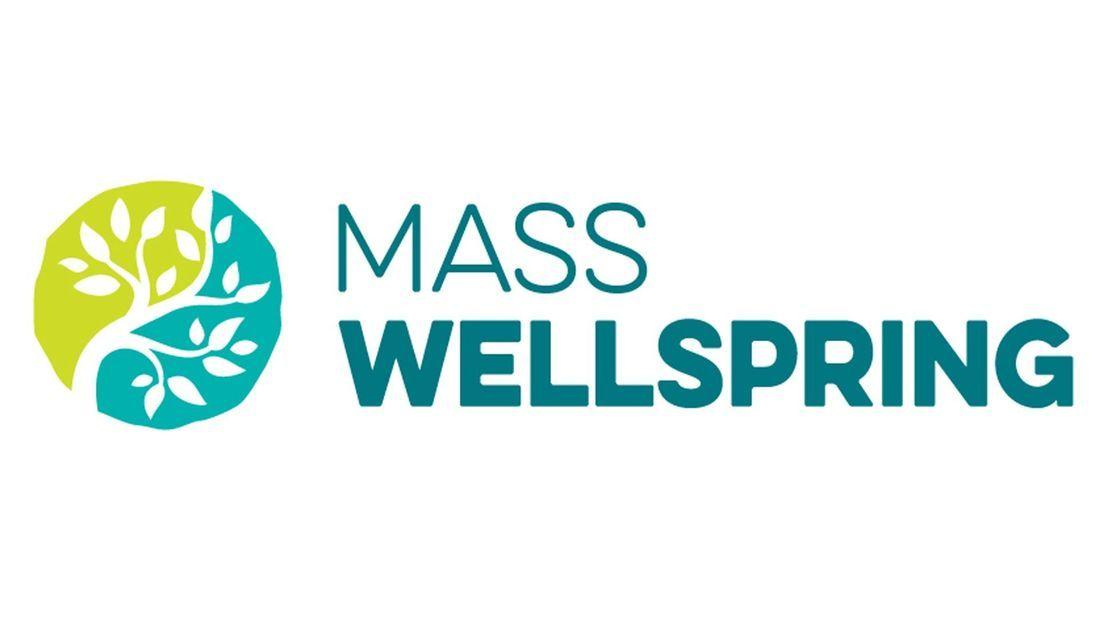 store photos Mass Wellspring