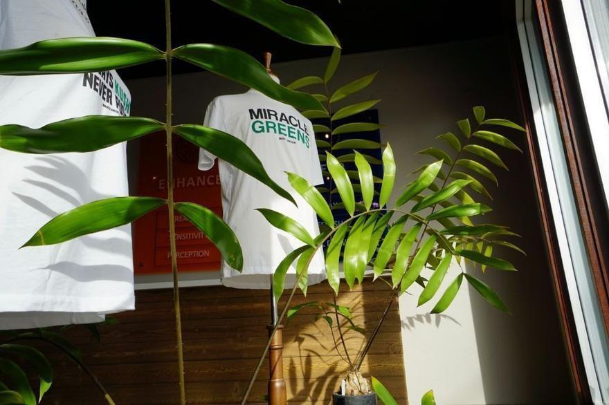 store photos Miracle Greens