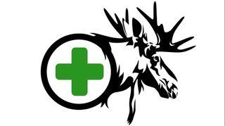 store photos Moosehead Medicine LLC