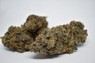 store photos Mt Hood Cannabis Co.