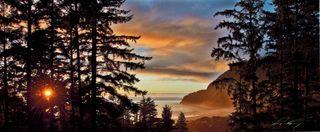 store photos Oregon Coast Cannabis