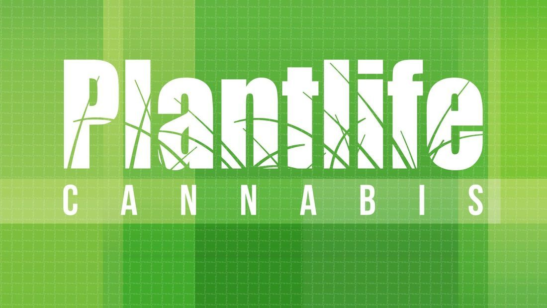store photos Plantlife Cannabis - Airdrie