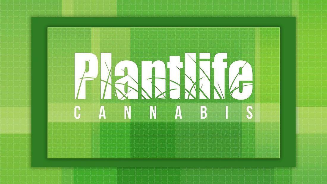 store photos Plantlife Cannabis - Erin Ridge