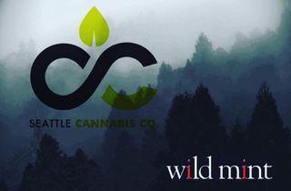 store photos Seattle Cannabis Company