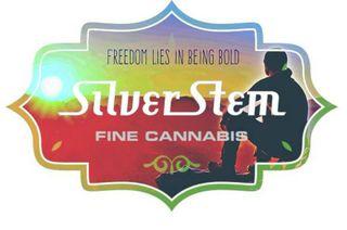 store photos Silver Stem Fine Cannabis - Portland Hollywood