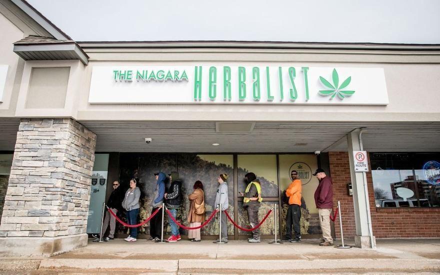 store photos The Niagara Herbalist - St. Catharines