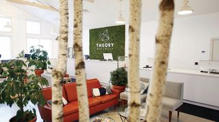 store photos Theory Wellness - Great Barrington Recreational