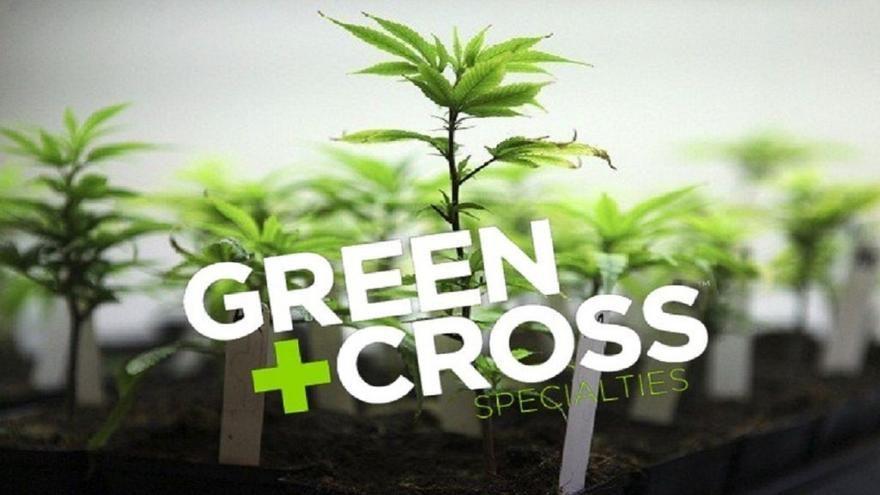 store photos Green Cross Cannabis Emporium - South