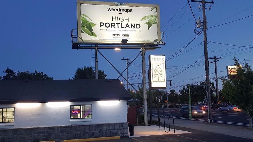 store photos Trees Dispensary Portland
